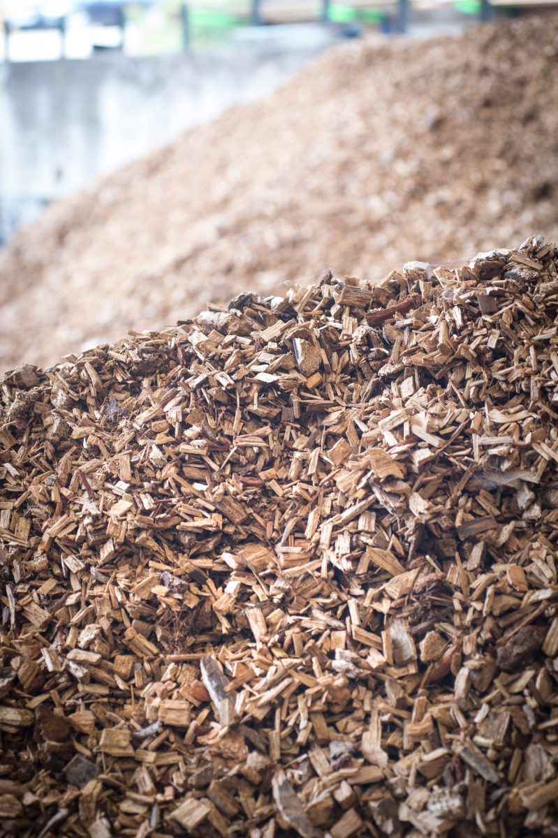wood chippings in timber yard